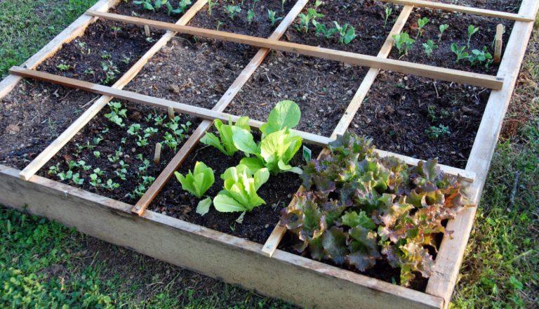 A kertészeti perlit kertépítésnél is hasznos